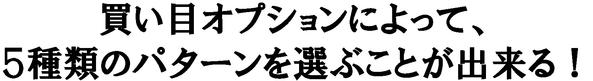 s_007g(2)